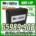 SKYRICH スカイリッチ リチウムイオンバッテリー ハーレー仕様 CCA550以上! 互換65989-90B 65989-97A ユアサ YTX20L-BS YIX30L Harley-Davidson BUELL