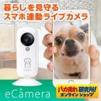 セキュリティカメラ イーカメラ eCamera 防犯カメラ ネットワークカメラ 小型 ペットカメラ 監視カメラ ワイヤレス スマホ ペット カメラ 留守 見守り