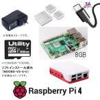 当日発送 送料無料 ラズベリーパイ4 8GB 8ギガ 6点セット 本体 電源 ケース Noobs入り(32G Micro SD) USBケーブル ヒートシンク Raspberry Pi4 8G UK製 正規店