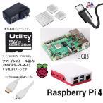 送料無料 ラズベリーパイ4/8G 8ギガ 7点セット 本体 電源 ケース Noobs入り(32G MicroSD) USBケーブル ヒートシンク マイクロHDMI-HDMIケーブル Element14製