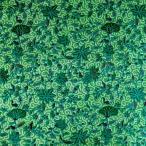 マルチカバー バティック 布 生地 アジアン雑貨 インテリア インドネシア ジャワ 更紗 木の実と草木のモチーフ グリーン