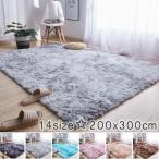 カーペット ラグマット 絨毯 おしゃれ 厚手 シャギーラグ 洗える 北欧 200 250 300 3畳 6畳 200×300