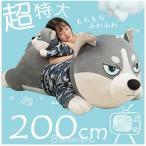 ぬいぐるみ 抱き枕 母の日 母の日ギフト 母の日 ギフト プレゼント 犬 大きいサイズ いぬ 洗える おもちゃ ふわふわ 特大 200cm