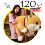 ぬいぐるみ 抱き枕 母の日ギフト 母の日 ギフト プレゼント 犬 柴犬 大きいサイズ いぬ 洗える おもちゃ ふわふわ 特大 120cm