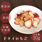ドライフルーツ いちご 砂糖不使用 国産 無添加 ギフト 30g お試し 苺 九州 紅茶 ヨーグルト 果物 乾燥果実 ハーバリウム お菓子 ポイント消化 送料無料