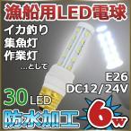 船舶用LED電球 12v 24v 6w 口金E26 6000k 防水 漁船用LED電球 イカ釣り 漁船 集魚灯