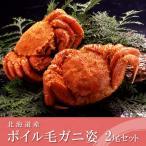 送料無料 北海道産 ボイル毛がに姿(約400g×2尾)てっかまる バンノウ水産 KHB402