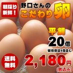 【送料無料】朝採り新鮮野口さんの《平飼い》こだわり卵20個入り(破損保証5個含む)【千葉県香取市より直送】