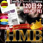 送料無料 サプリ サプリメント HMB 大容量 約4ヶ月 得トクセール ポイント消化 お試し ギフト 通販 1000円 ポッキリ