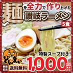 讃岐ラーメン5食 特製スープ付き  ゆうメール便専用 [ 生ラーメン 中華麺 うどんだし ]