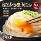 選べる 讃岐生うどん6食(300g×2袋)ダシ醤油付 送料