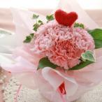 Yahoo!tweeling onlineshop NishiiBaraen母の日 14日にお届け(一部地域除く)  mamaブケット 花束 母の日 カーネーション ギフト ラッピングしたまま飾れる花束
