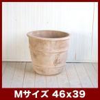 植木鉢 テラコッタ テラアスタ シーリス M15号