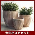 植木鉢 陶器鉢 ウィトン 980 赤土(白土焼付) 3点セット