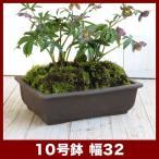 植木鉢 陶器鉢 常滑焼ウ泥盆栽鉢 長角エン付入窓 10号