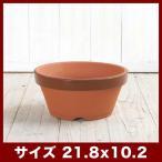 植木鉢 陶器鉢 常滑焼 駄温鉢 浅 7号