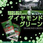 /耐暑性に優れた特選ミックス/ダイヤモンドグリーン 1kg入り お庭の広さ6〜7.6坪用 バロネス寒地型芝の種