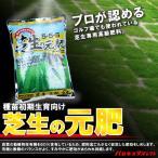 ゴルフ場も太鼓判!バロネス 芝生の元肥 2.5kg入り 種苗初期生育向け。