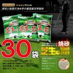 芝生 目砂 乾燥 焼砂 バロネス 芝生の目砂・床砂 10kg入り×30袋セット 送料無料