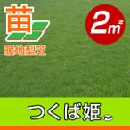 / 代引不可 / つくば姫(姫高麗芝)(張り芝用) つくば産 2平米(0.6坪分) 園芸