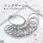 其它 - リングゲージ 指輪サイズ サイズゲージ 1号〜27号まで 奇数全14サイズ リングのサイズ 測る size ring ピンキーリング