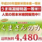 熊本のお米 くまさんの力 10kg 1等米 九州米