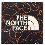 ノースフェイス プリントステッカー (THE NORTH FACE NN31710)/アウトドア用品