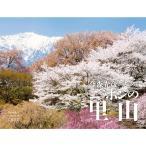 山と渓谷社 カレンダー2017 世界自然遺産 日本編