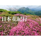 山と渓谷社 カレンダー2017 美しき日本の山