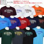 「受注」インザペイント IN THE PAINT 2020 総体 石川インターハイ 記念グッズ Tシャツ タイプD IH2014