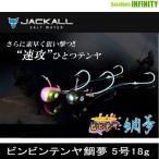 ●ジャッカル ビンビンテンヤ鯛夢 5号18g 【メール便配送可】