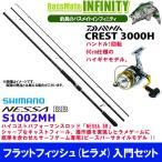 【フラットフィッシュ(ヒラメ)入門セット】●シマノ NESSA 熱砂 ネッサBB S1002MH+ダイワ 16 クレスト 3000H