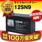 12SN9 純正品と完全互換 安心の動作確認済み製品 USPバッテリーキットに対応 安心保証付き 新品 産業用鉛電池 在庫あり・即納