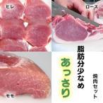 焼肉セット  (お試し 食べ比べ) 豚肉(やまざきポーク青森県産) 豚ヒレ・ロース・モモ 900g 自家製タレ付属(BBQ バーベキュー 焼き肉)