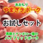 豚肉セット 国産 (やまざきポーク青森県産) (お試し 食べ比べ) 3000 冷凍