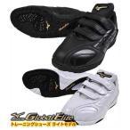サイズ交換往復送料無料 トレーニングシューズ ミズノ 野球 トレーニングシューズ グローバルエリート ライトモデル 軽量 11GT1411 アップシューズ B_SH 靴