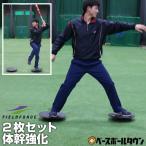 2枚セット バランスボード 手軽に簡単体幹トレーニング! フィールドフォース トレーニング用品 野球 サッカー フットサルメンズ サッカー館