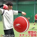 野球 スローイングマスター キャッチボール ピッチング 投球 練習用用品 FPG-5 フィールドフォース