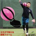 野球 スローイングパートナー ピッチング 投球 送球 キャッチボール FSLP-18 フィールドフォース トレーニング