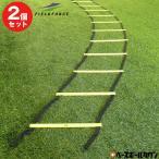 トレーニング ラダー2セット組 6m 連結可能 トレーニングマニュアル付 基礎体力 野球 サッカー FST-600R フィールドフォース