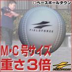 アイアンサンドボール 軟式A・C号サイズ 大きさそのまま&重さ約3倍  フィールドフォース
