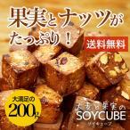 【大麦と果実のソイキューブ お試し200g】小麦粉不使用でとってもヘルシー♪食物繊維たっぷりで満腹感ばっちり!5つのドライフルーツ味