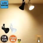 LED ビーム球付き 配線ダクトレール用 スポットライト ダクトレール スポット照明器具 LED ビーム球 E26 E26RAILPAR38-LDR17 黒 白