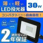 LED投光器 電球色 昼光色 黒 30W IP65 屋内 屋外 防塵 耐塵 防水 LEW0302 ビームテック
