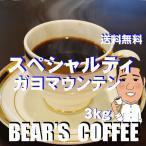 bears coffee コーヒー豆ガヨマウンテン 3kg 人気のコーヒー豆 人気に訳ありコーヒー