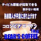 コーヒー豆コロンビア ポパヤン 1kg コーヒー豆 お試しコーヒー コーヒー送料無料  人気に訳あり