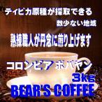 コーヒー豆コロンビア  ポパヤンスプレモ  3kg コーヒー豆送料無料   コーヒー激安