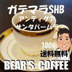 bears coffee コーヒー豆ガテマラ サンタバーバラ農園 100g サンプルコーヒー コーヒー豆送料無料 コーヒー訳あり人気