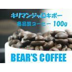 bears coffee コーヒー豆キリマンジャロ キボ 100g コーヒー豆お試し コーヒー豆焙煎 サンプルコーヒー コーヒー送料無料 メール便 コーヒー訳あり人気