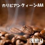 コーヒー豆ドミニカ バラオナカリビアンクィーン  3kg  コーヒー送料無料 コーヒー豆お試し   大人気のコーヒー